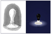 FOSCARINI | White & Black Light di James Wines